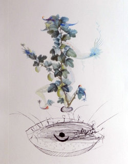 Flordali / Les Fruits Gooseberry 1969 (Early) Limited Edition Print by Salvador Dali