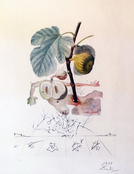 FlorDali, Les Fruits Homme Figuier, Fig  1969 (Early) Limited Edition Print by Salvador Dali