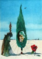Enigma of the Rose 1976 Limited Edition Print by Salvador Dali - 0
