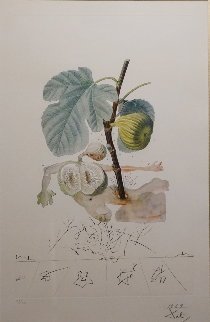 Flordali / Les Fruits Fig  1969 (Early) Limited Edition Print - Salvador Dali