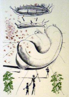 Colibri Suite - Moscas 1973 AP Limited Edition Print - Salvador Dali