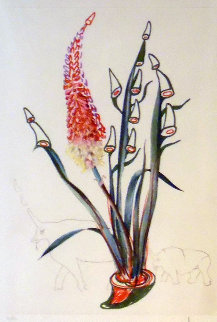 Florals Suite Stock (Rhino Horns) 1972 Limited Edition Print - Salvador Dali