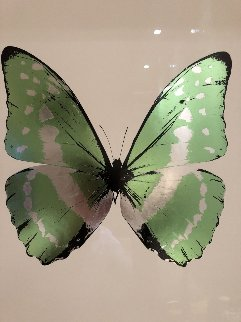 Soul 2010 Limited Edition Print - Damien Hirst