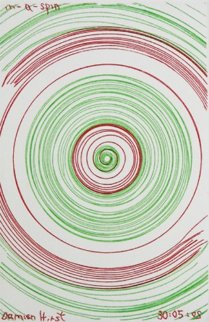 In a Spin, From in a Spin 2002 Limited Edition Print by Damien Hirst
