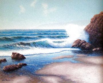 Sun Sparkle 1983 27x23 Original Painting - David Dalton