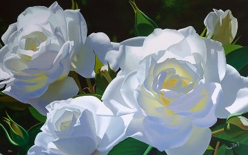 White Rose Garden 2005 Limited Edition Print - Brian Davis