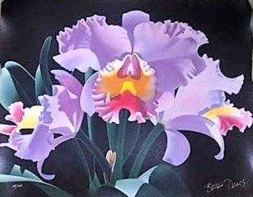 Violet Cattleya 2000 Limited Edition Print by Brian Davis