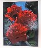Magenta Roses 1996 Limited Edition Print by Brian Davis - 3