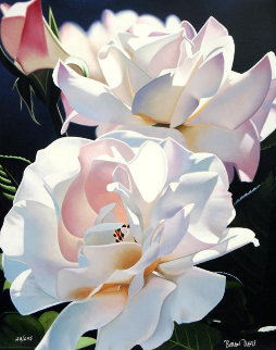 Two White Roses 1996 Limited Edition Print by Brian Davis