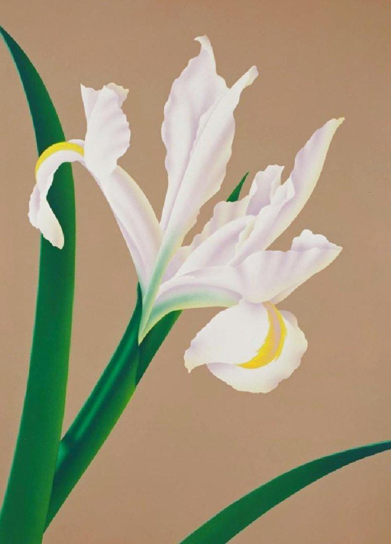 Iris IV 1980 Limited Edition Print by Brian Davis