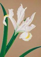 Iris IV 1980 Limited Edition Print by Brian Davis - 0