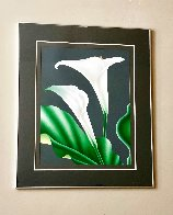 Calla III 1980 Limited Edition Print by Brian Davis - 1