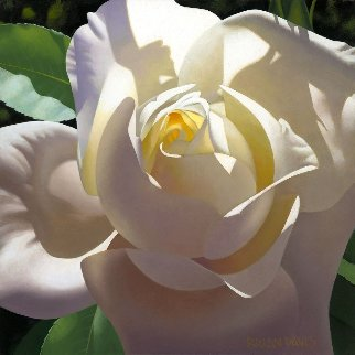 Pale Golden Rose 16x16 Original Painting - Brian Davis
