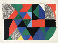 Polyphonie 1970 Limited Edition Print by Sonia Delaunay - 1
