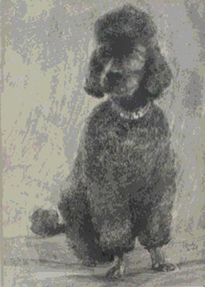 Pepper The Poodle 1968 Limited Edition Print by Neal Doty