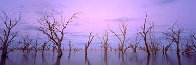 Lake Victoria NSW, Australia 1992 Panorama by Kenneth Duncan - 0