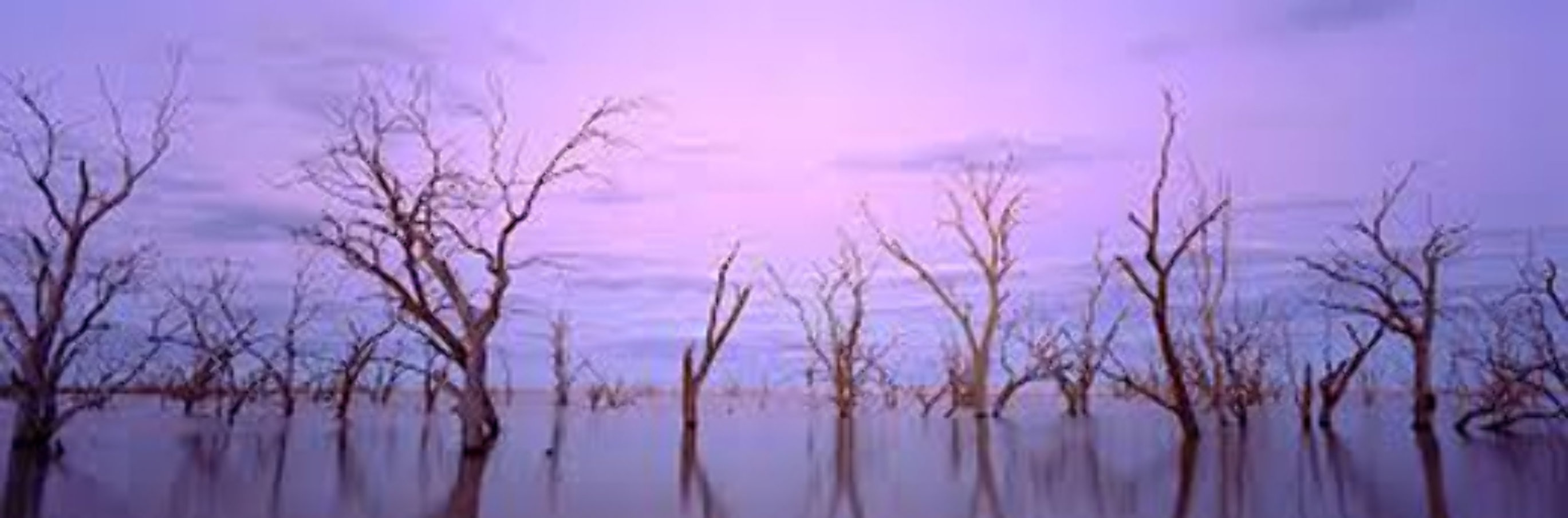 Lake Victoria NSW, Australia 1992 Panorama by Kenneth Duncan