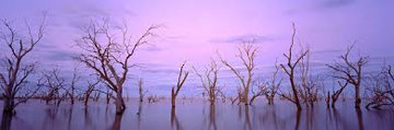 Lake Victoria NSW, Australia 1992 Panorama - Kenneth Duncan