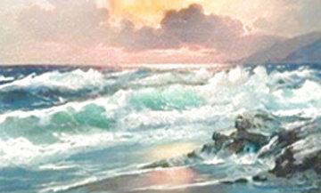 California Sunset 33x53   Huge Original Painting - Alex Dzigurski