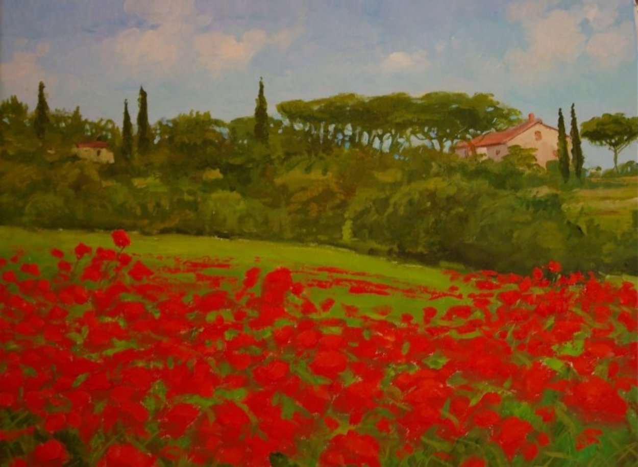 Tuscan Poppies, Italy 2010 14x18 Original Painting by Alex Dzigurski II