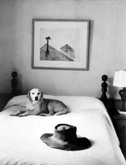 Andrew Wyeth's Hat, Bed and Dog 1965 Photography - Alfred Eisenstaedt
