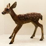 Fawn I Bronze Sculpture 2014 21 in Sculpture - Jim Eppler