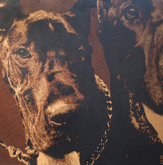 Dogs 2000 23x23 Original Painting by Mark Evans