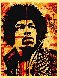 Hendrix 2004 Limited Edition Print by Shepard Fairey  - 1