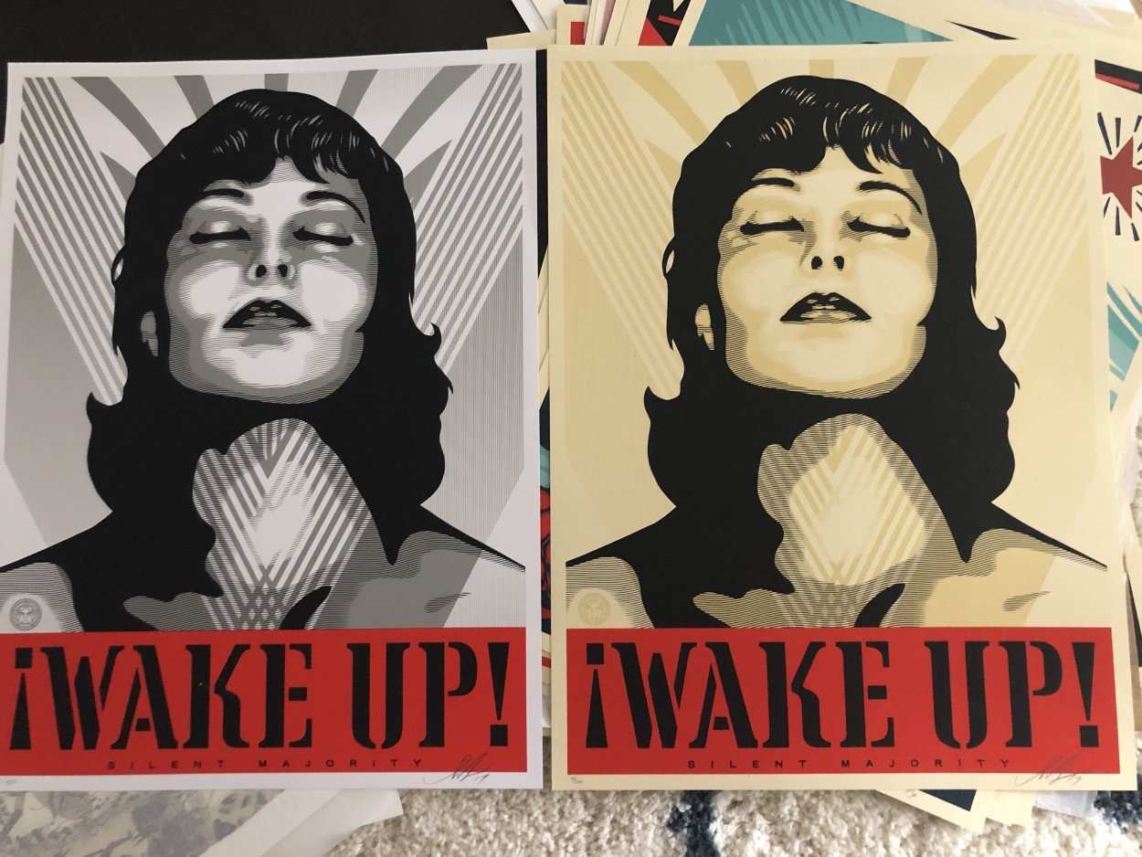 Wake Up! Set of 2 Prints 2017 Limited Edition Print by Shepard Fairey