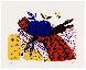 Still Life (Fruit, Scarf, and Bees) Limited Edition Print by Alexandre Fassianos - 1