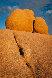 Fruit of Temptation AP 1998 Panorama by Michael Fatali - 0