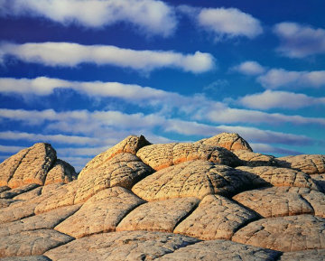 Sleeping Turtles AP 1996 Panorama by Michael Fatali