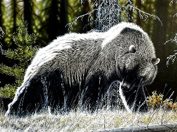 High Country Grizzly 1993 48x60 Huge Original Painting - Randy Fehr