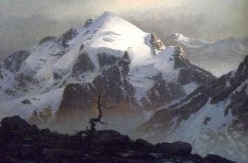 Magic Mountain 40x28 Original Painting - James Fetherolf