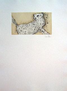 Curious Cat 1976 Limited Edition Print - Leonor Fini