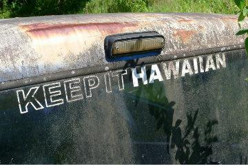 Keep It Hawaiian Limited Edition Print - Mick Fleetwood