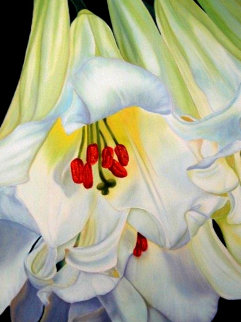 Douce Aurore - Lys Blanc 2019 36x24 Original Painting - Claire Fontaine