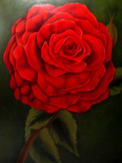 Rose D'amour - Rose 2019 24x28 Original Painting by Claire Fontaine