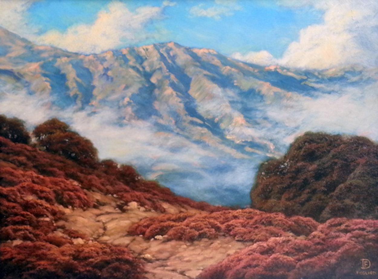 California Hills 2008 17x21 Original Painting by Dirk Foslien