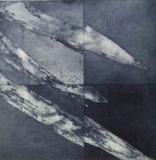 Series Square/median 1991 Limited Edition Print - Francisco Ferro