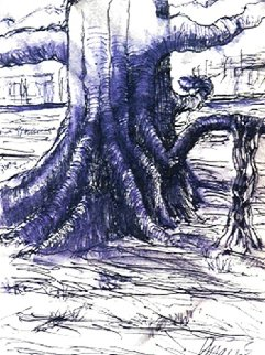 Banyan Tree 1991 Limited Edition Print by Jerry Garcia