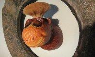 Tufted Gustard Mixed Media Sculpture 2000 Sculpture by Dr. Seuss - 1