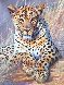 Leopard 1995 24x30 Original Painting by Grant Hacking - 3
