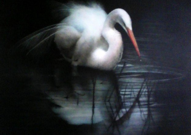 Untitled (Egret) 2003 56x80 Original Painting by Ray Hare