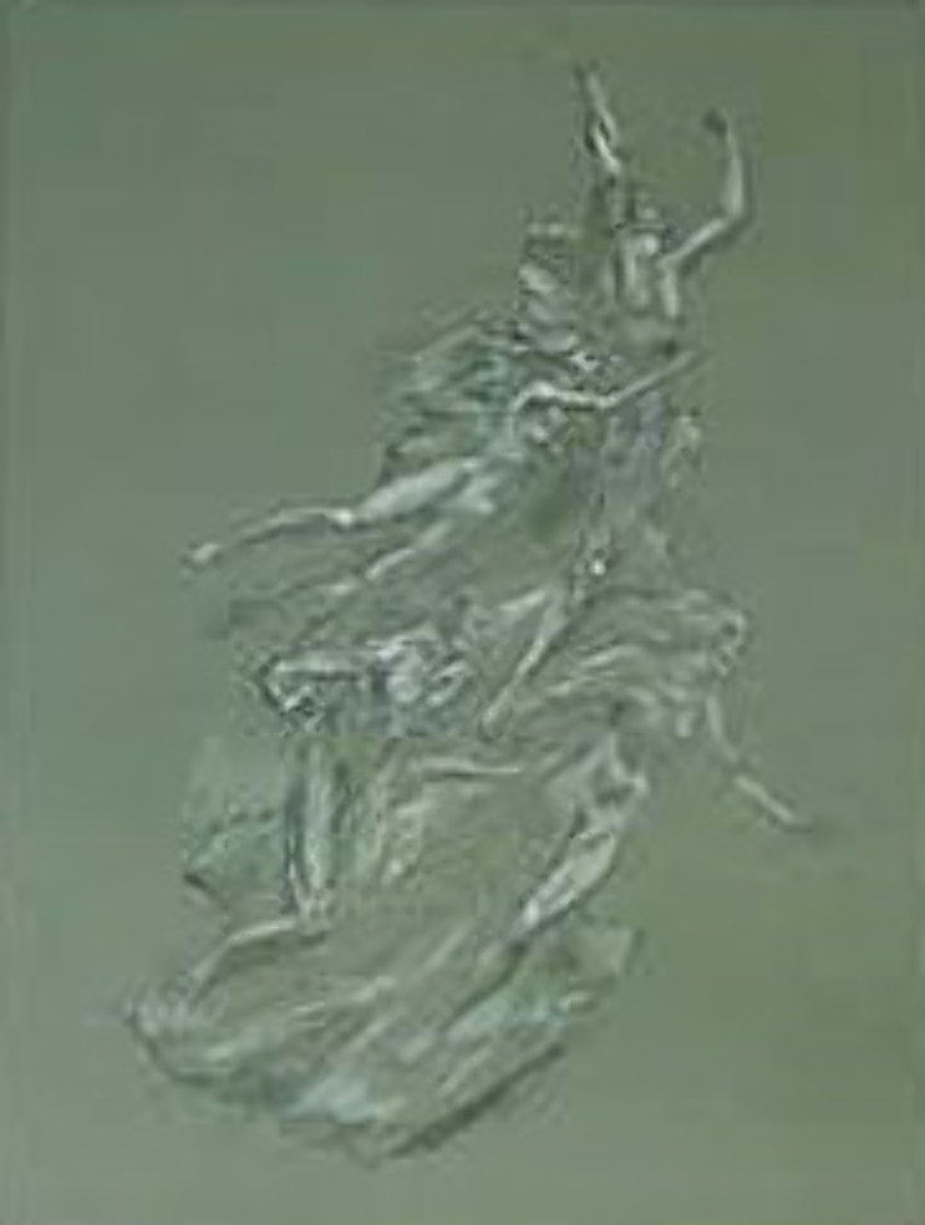 Heroic Spirit lithograph 1992 Limited Edition Print by Frederick Hart