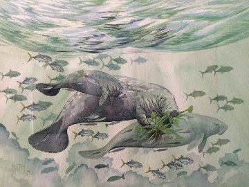 Manatees Watercolor 1987 18x24 Watercolor - Guy Harvey