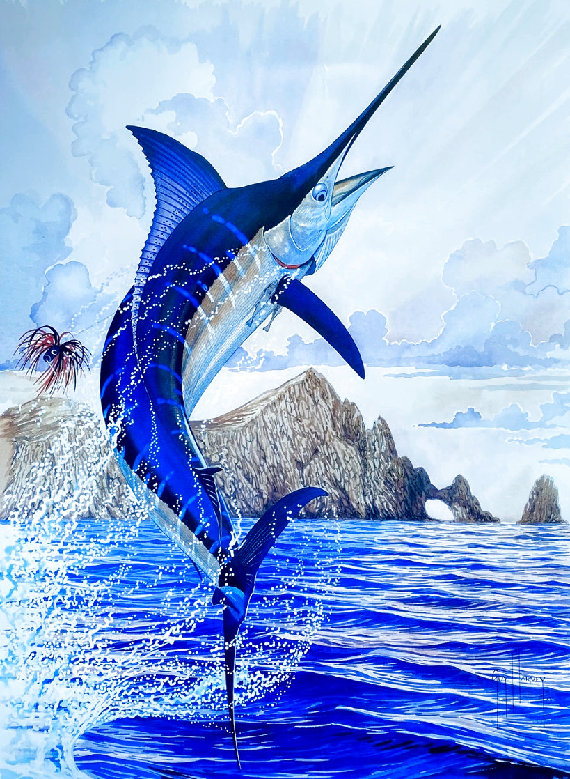 Blue Marlin of Cabo San Lucas 1996 Limited Edition Print by Guy Harvey