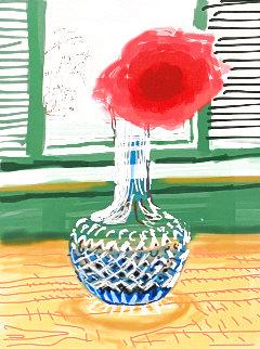 My Window  2010 Limited Edition Print - David Hockney