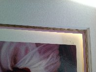 Candice 2005 Limited Edition Print by Douglas Hofmann - 2
