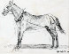 Working Horse 1990 15x16 Drawing by Edward Hopper - 0